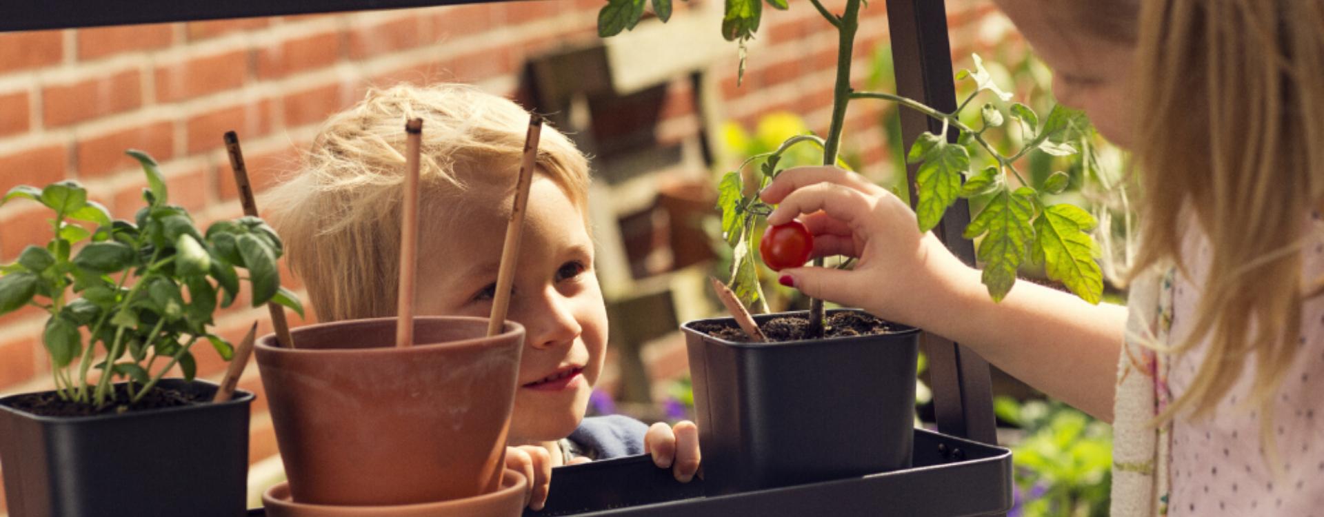 scuole-sostenibili-cancelleria-ecologica